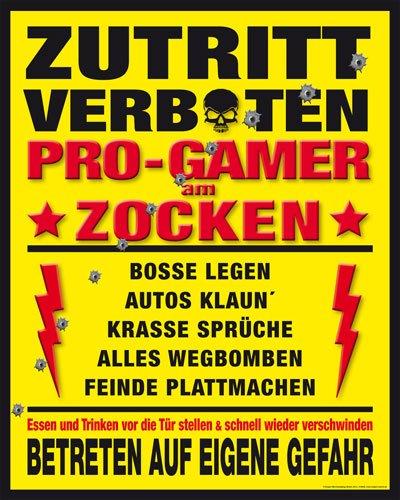 Poster Pro-Gamer Zutritt verboten - Größe 40 x 50 cm - Miniposter