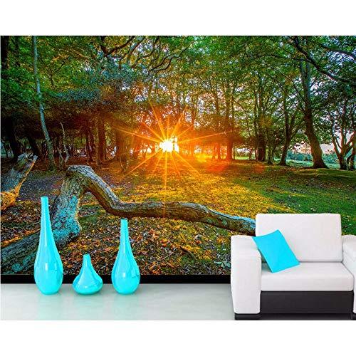 Xzfddn Árboles Rayos de Luz Follaje Ramas Naturaleza Papel pintado 3D Sala Sofá Tv Pared Dormitorio Papeles de Pared Decoración del Hogar