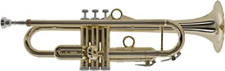 pInstruments ピーインストゥルメンツ プラスチック製管楽器 B♭トランペット pTrumpet hyTech ゴールド PTRUMPET1HTG (キャリーバッグ付属) 【国内正規品】