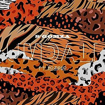 Umdali (feat. Nozipho)