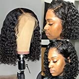Dorosy Hair Lace Front Human Hair Wigs 150% Density Remy Hair with Natural Hairline for Black Women Curly Hair with Baby Hair(12 inch)