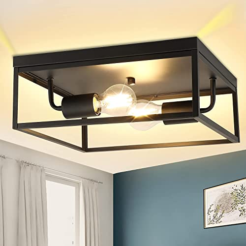 lowest DLLT 2-Light Industrial Flush-Mount Ceiling Lighting Fixture, discount 12.9 Inch Cage Square Close to Ceiling Light for popular Kitchen Hallway Bedroom Foyer Living Room Dining Room, Matte Black Finish Ceiling Lamp sale