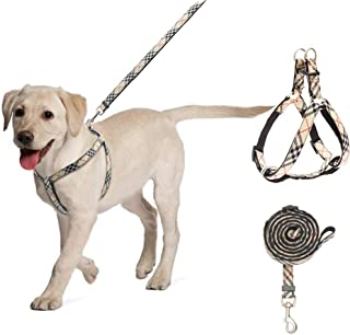 BINGPET No Pull Dog Harness and Leash – Step in Puppy Harness with Leash Set for Small to Medium Dogs (Plaid)