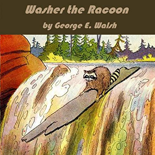 Washer the Raccoon cover art