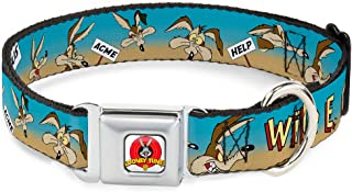"buckle-down, 1"" Wide - Fits 9-15"" Neck - Small, WILE E. COYOTE Expressions/Signs Desert"