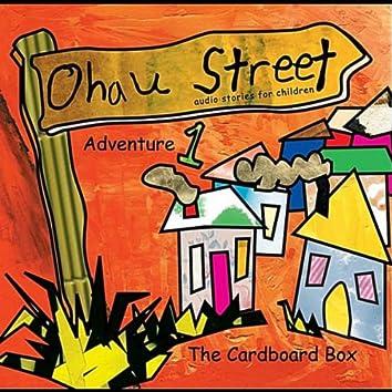 Ohau Street the Cardboard Box