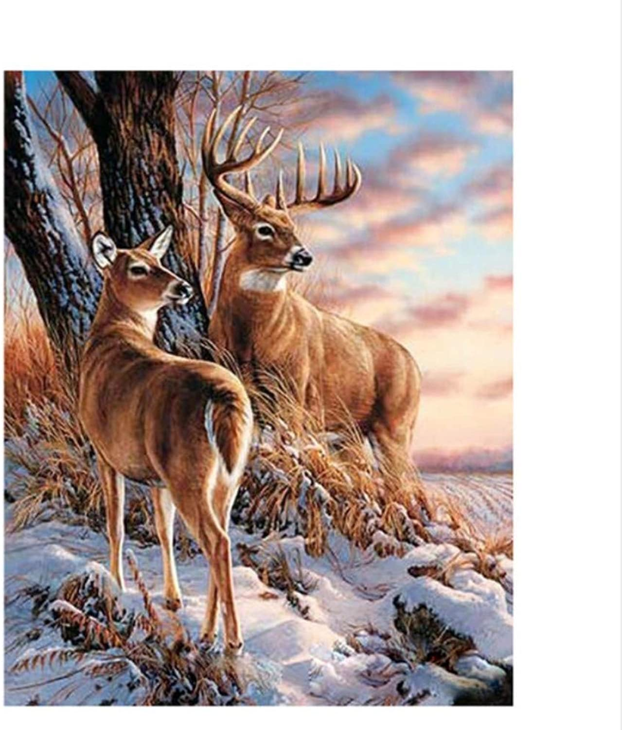 CAYYOU DIY Digital Painting By Numbers The Slope Deer Oil Painting Mural Kits coloring Wall Art Picture Gift  Framed  50x60cm