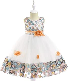 Toddler Baby Flower Girls Little Flower Little Flower Little Flower Dresses up Clothes for Little Girls Embroidered Lace Color Matching Mesh Lace Puff Little Flower Little Flower Dresses Flower Girl W