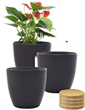 7'' Self Watering Planter Pots with Coco Soil for Home Garden Outdoor Indoor Office Modern Decorative Flower Pots for All House Plants Flowers Herbs Succulents (Brown)