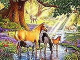Diamante bordado caballo completo cuadrado redondo diamante pintura lago punto de cruz Animal bosque diamantes de imitación mosaico arte de pared A1 40x50cm