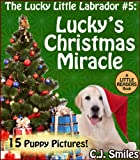 Lucky's Christmas Miracle