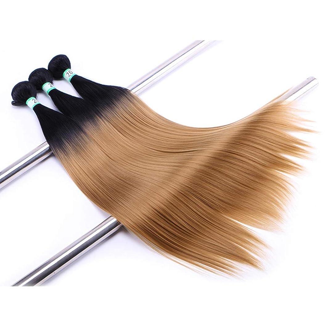 斧上回るおんどりHOHYLLYA ヘアエクステンション織りバンドルブロンドナチュラルヘア横糸ストレートクリップなし(3バンドル)合成髪レースかつらロールプレイングウィッグロングとショート女性自然 (色 : Blonde, サイズ : 20inch)