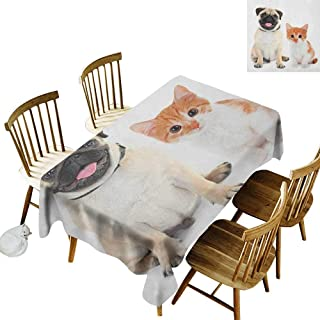 kangkaishi Waterproof Anti-Wrinkle no Pollution Long Tablecloth Adorable Kitten and Puppy Photography Cute Animal Fun Young Pets Happy Image W14 x L108 Inch Cream Orange White
