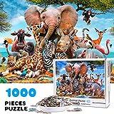 Vimzone Puzzle de 1000 Piezas para Adultos, Mundo Animal, Ilustraciones de Juegos de Rompecabezas para Adultos, Adolescentes, Rompecabezas de Piso de Impresión de Alta Definición (70 x 50 cm)