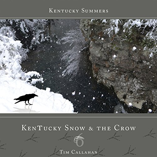 Kentucky Snow & the Crow audiobook cover art