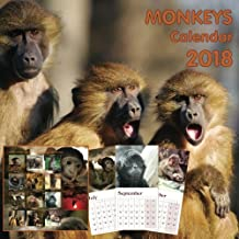Monkeys calendar 2018
