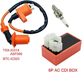 FLYPIG 6 Pin CDI Box + Ignition Coil + Spark Plug for TRX 300 Fourtrax FW 1988 1989 1990 1991 1992