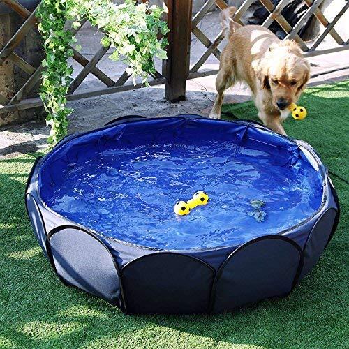 Petsfit Piscina de perro plegable, perrito de mascota Bañera, piscina de...