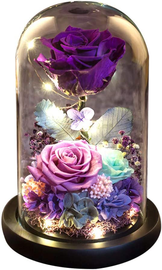YSHCA Max 50% OFF Forever Rose Preserved Real Beauty The Beast and Max 72% OFF Art