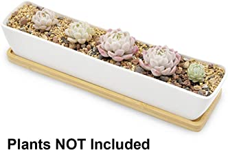 Gift Pro Plant Window Boxes 11.1 inch Long Rectangle White Ceramic Succulent Planter Pots/Mini Flower Plant Containers with Bamboo Saucers Plant Window Boxes (Style 1)