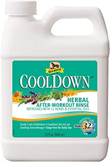 CoolDown Herbal After Workout Rinse, 12 Herbs & Essential Oils, Soap-Free Formula, Concentrate Makes 32 Gallons