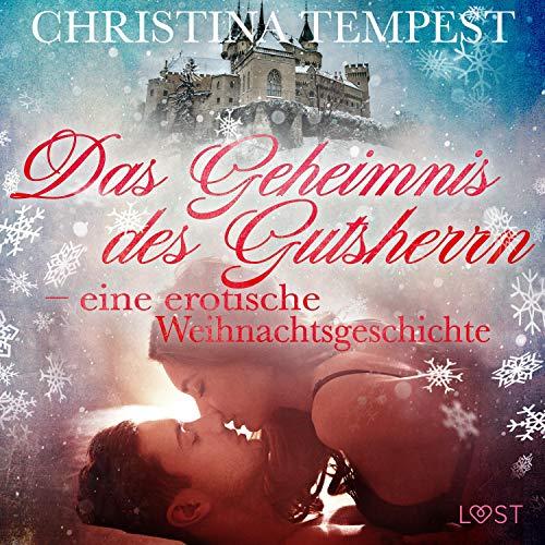 Das Geheimnis des Gutsherrn - eine erotische Weihnachtsgeschichte Titelbild