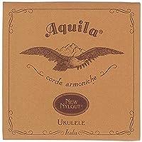 Aquila ナイルガット バリトンワウンド G&D AQ-B4W 21U