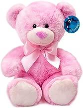 WILDREAM Pink Teddy Bear Stuffed Animal Plush in Sitting Position 9.8