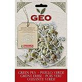 Geo Pisello Verde Semi da Germoglio, Marrone, 12.7x0.7x20 cm