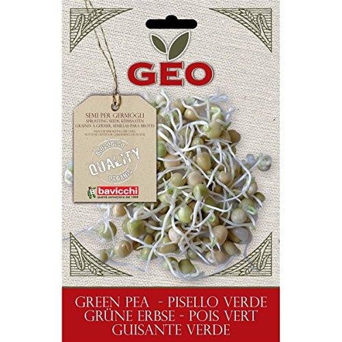 Geo Graine à Germer Pois Vert Brun 12,7 x 0,7 x 20 cm