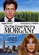 Che Fine Hanno Fatto I Morgan? [Italian Edition]