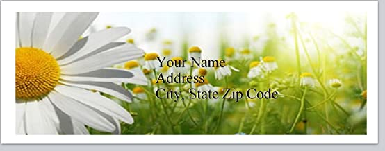 150 Personalized Return Address Labels Daisies Flowers (bx 230)