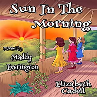 Sun in the Morning audiobook cover art