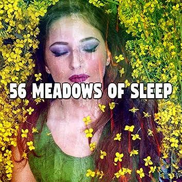56 Meadows of Sle - EP