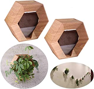 Wall Planters for Indoor Plants - 2 Pack Wood Grain DIY Vertical Wall Planters Flower Pots - Hexagon Lightweight Hanging P...