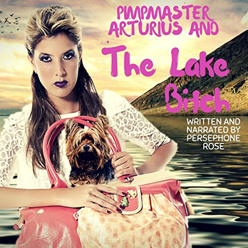 Pimpmaster Arturius and the Lake Bitch audiobook cover art