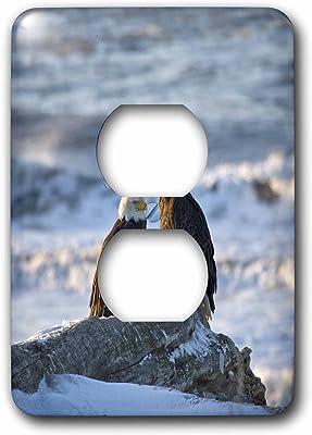Skates 2 Plug Outlet Cover 3dRose lsp/_1014/_6 Figure