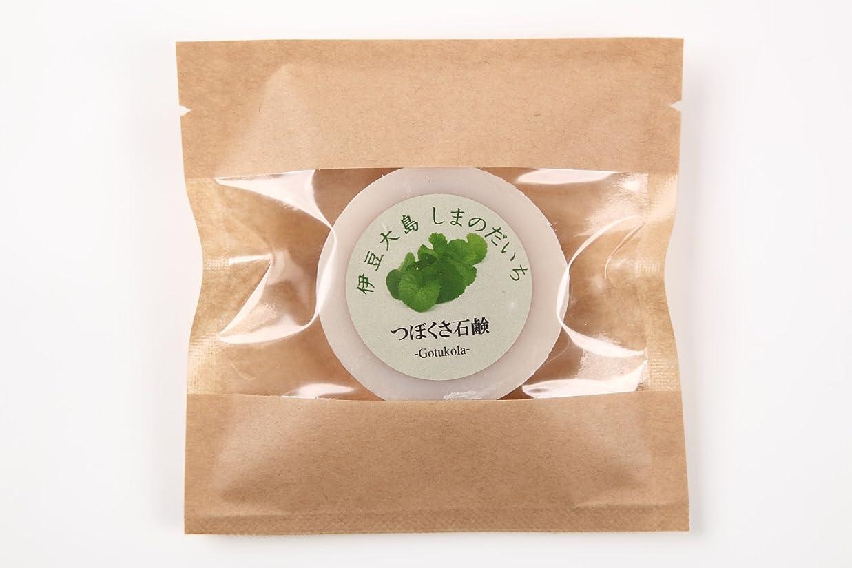 プーノトライアスロン東ツボクサ(ゴツコラ)の石鹸(伊豆大島産)