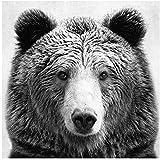 NIEMENGZHEN Druck auf Leinwand Schwarz und Weiß Tier Bär Kunstdruck auf Leinwand und Poster Tier Bär Fotografie Leinwand Malerei Wandbild Kunst Wohnkultur-50x70cm Kein Rahmen