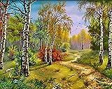 HRKDHBS Pintura Al Óleo De Bricolaje Paisaje Forestal Kit De Pintura Digital DIY Niños Principiantes Artes Manualidades Decoración 40X50Cm (Sin Marco)