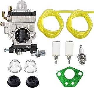 Hilom 300486 Carburetor with Repower Tune-Up Kit for Earthquake E43 E43CE E43WC Auger MC43 MC43E MC43CE MC43ECE MC43RCE Tiller MD43 WE43 WE43E WE43CE Edger