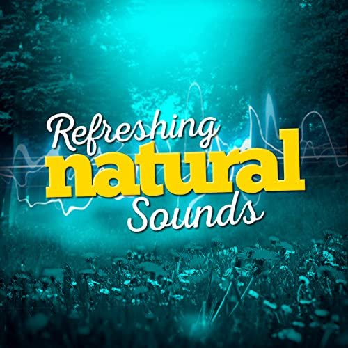 Nature's Mystic Moods, Natural Forest Sounds & Nature Sounds Sleep