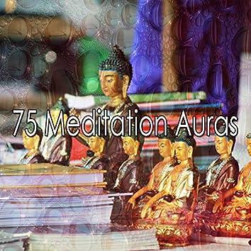 75 Meditation Auras