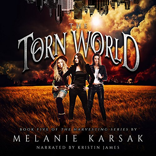 The Torn World cover art