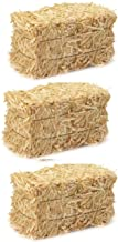 LJIF Thanksgiving Fall Harvest Autumn Fall Decorations Straw Bales, 2 1/2-Inch x 2.5 inch x 3.5 inch Hay Bale Bundle of 3