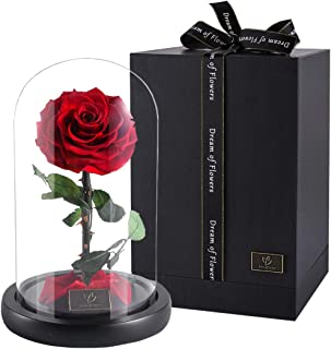 Beauty And The Beast Rose,Forever Rose, Enchanted Rose, Glass Dome Black wood Base, Valentine's Party Gifts, Wedding Gifts, Best Gift for Her (red-1)