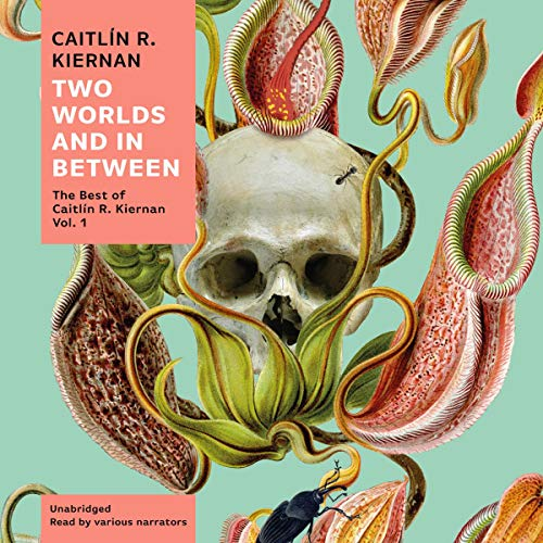 Two Worlds and In Between audiobook cover art