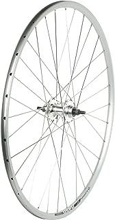 Sta Tru Silver Formula High Flange Flip-Flop Track Hub Rear Wheel (700X20)