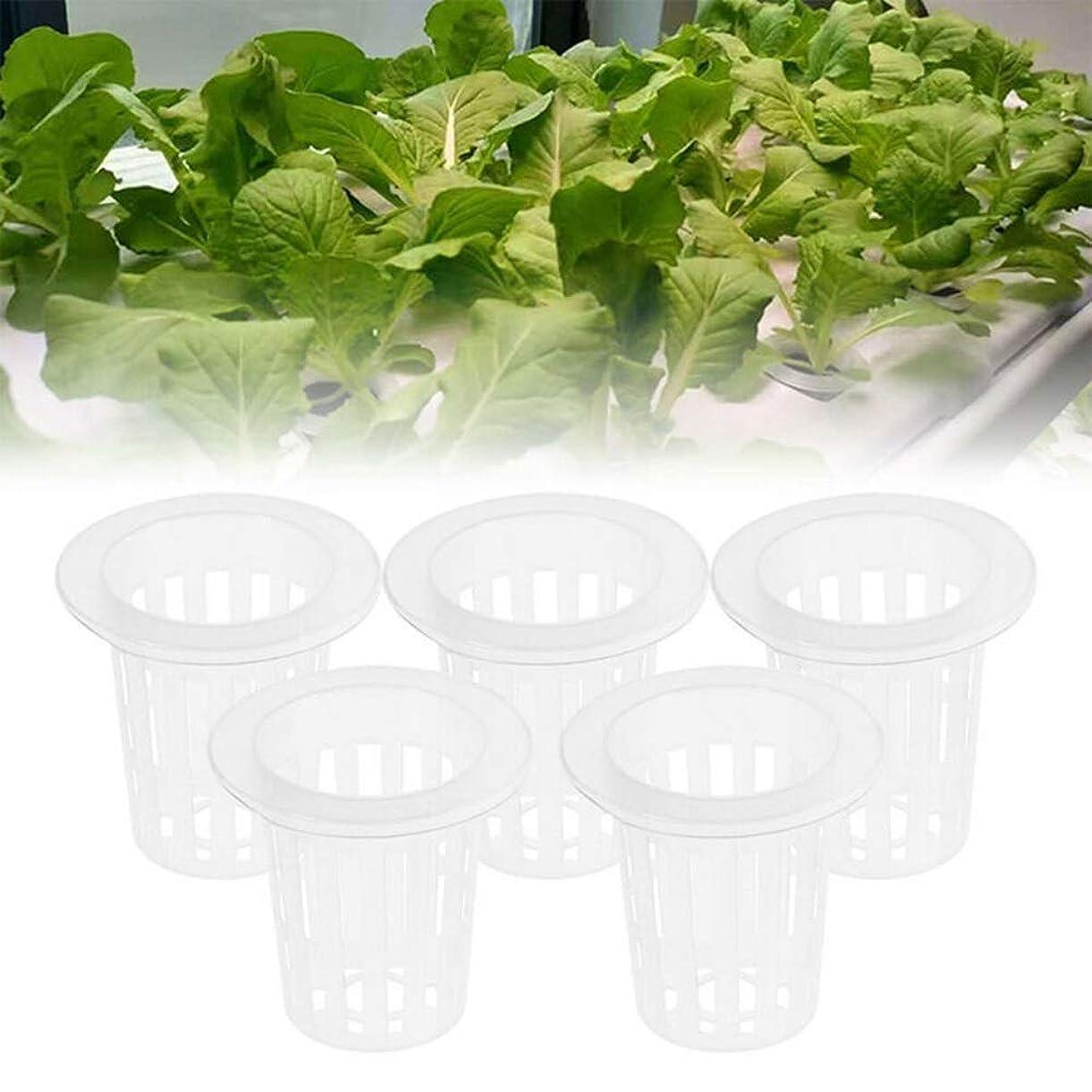 宝傷つける電気的100X野菜ネットカップスロットメッシュSoilless文化野菜ポット水耕野菜ネットカップガーデンポット&プランター