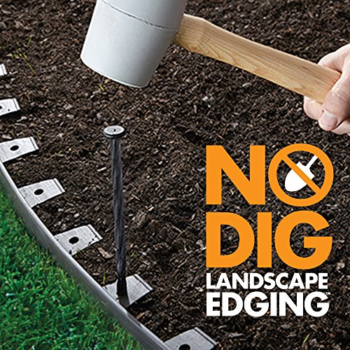 Dimex EasyFlex Plastic No-Dig Landscape Edging Kit, 100-Feet (3000-100C)